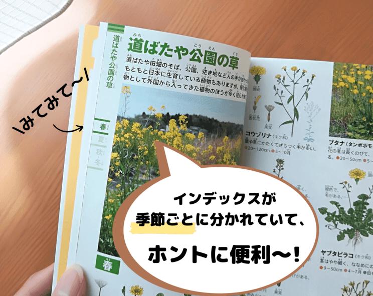 小学館 植物ポケット図鑑index