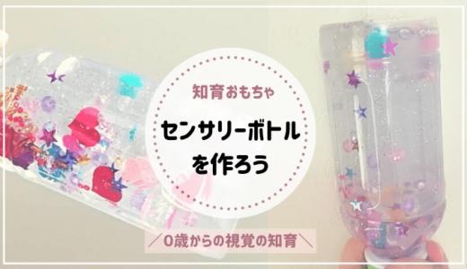 【センサリーボトルの作り方】手作り知育玩具で赤ちゃんの視覚へ働きかけよう!
